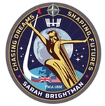 Brightman ISS mission patch